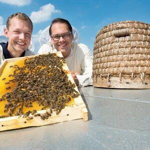 Apiarists with their bees on the roof of the ATLANTIC Hotel SAIL City in Bremerhaven